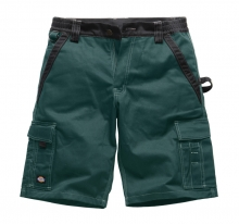 Dickies Bermuda Shorts - IN30050